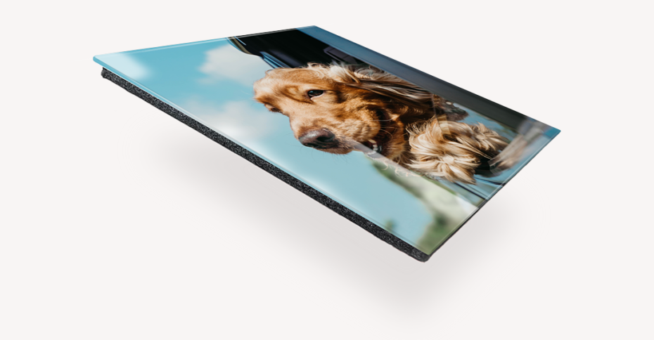 adding backing for mounting to glass print of dog hanging out of car window