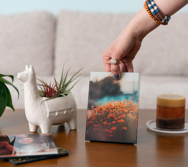 glass print of dog wrapped in blanket being placed on table