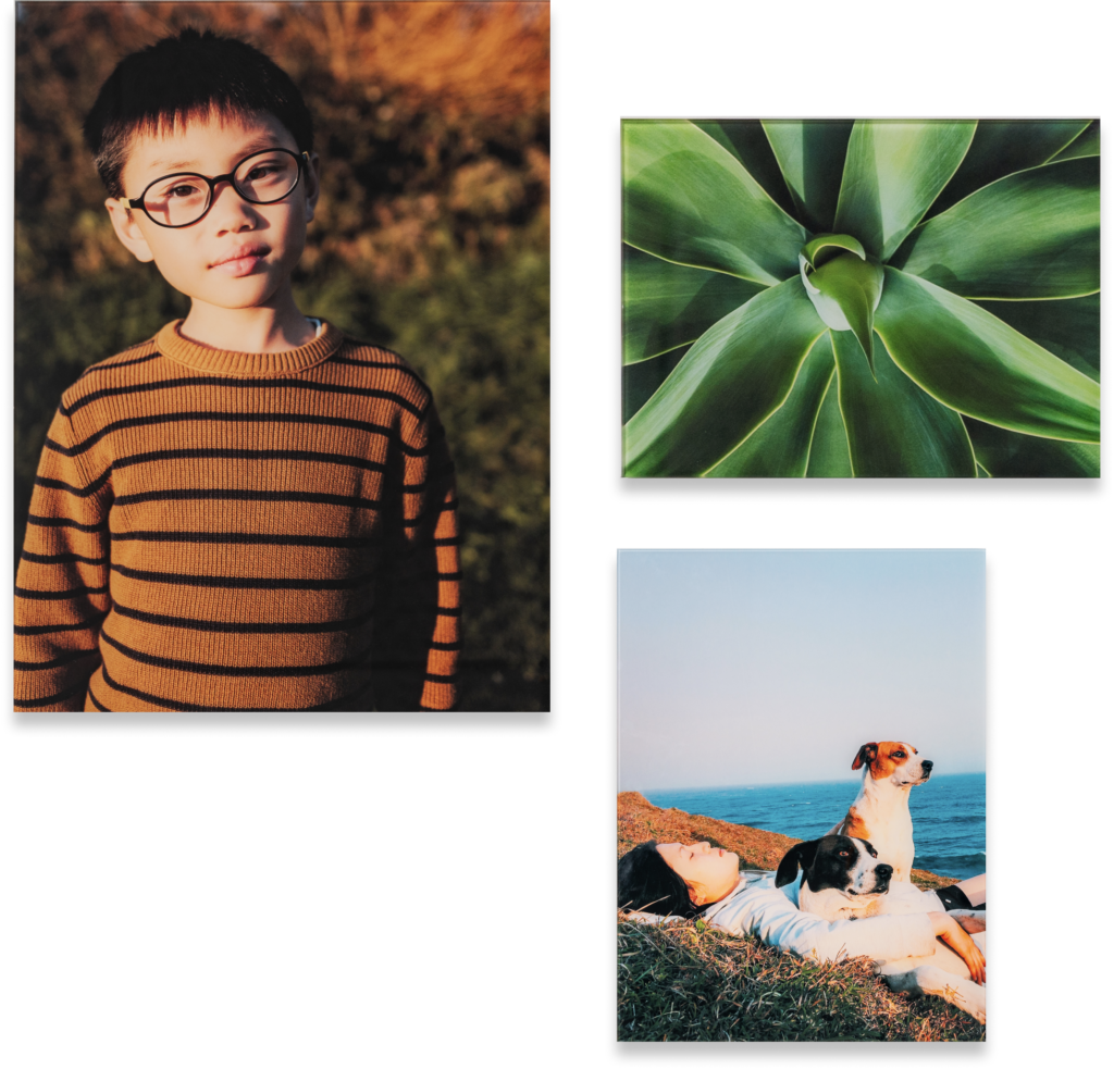 glass prints of a kid, plant and dogs near the ocean